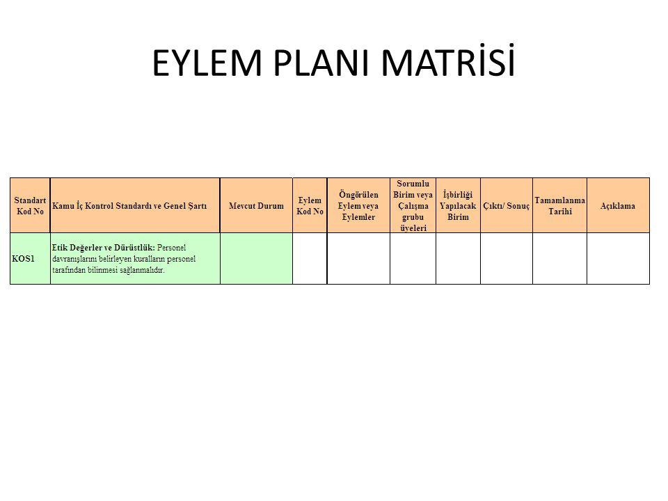 EYLEM PLANI MATRİSİ