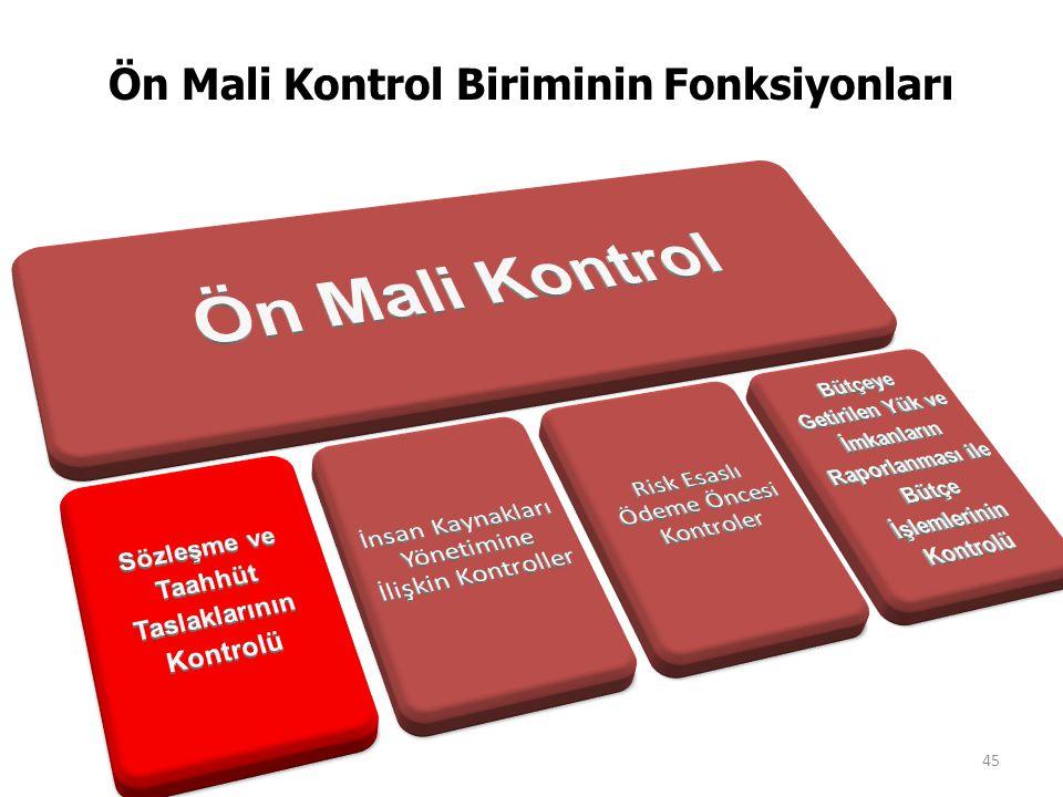 Ön Mali Kontrol Biriminin Fonksiyonları 45