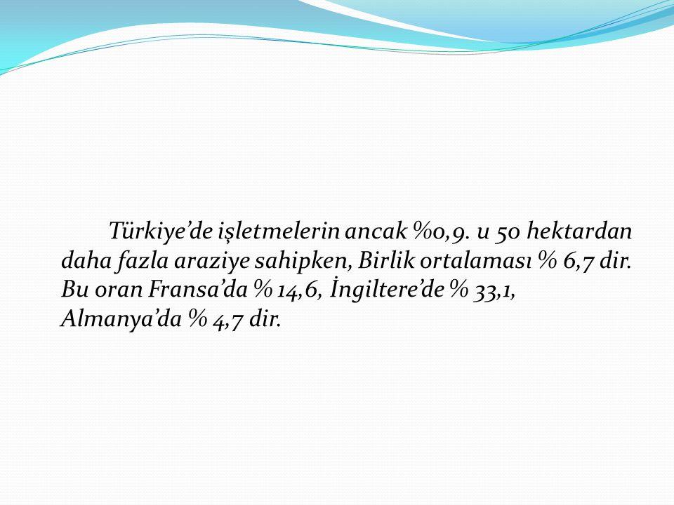 Türkiye'de işletmelerin ancak %0,9.