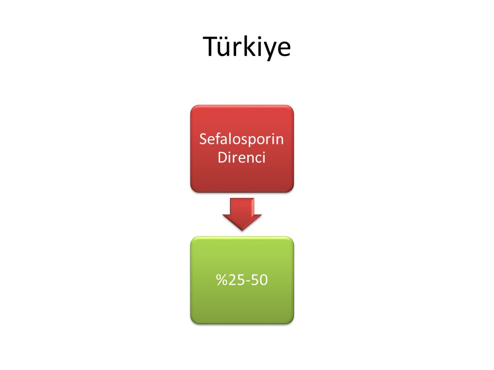 Türkiye Sefalosporin Direnci %25-50