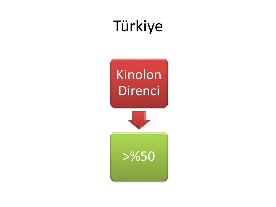 Türkiye Kinolon Direnci >%50