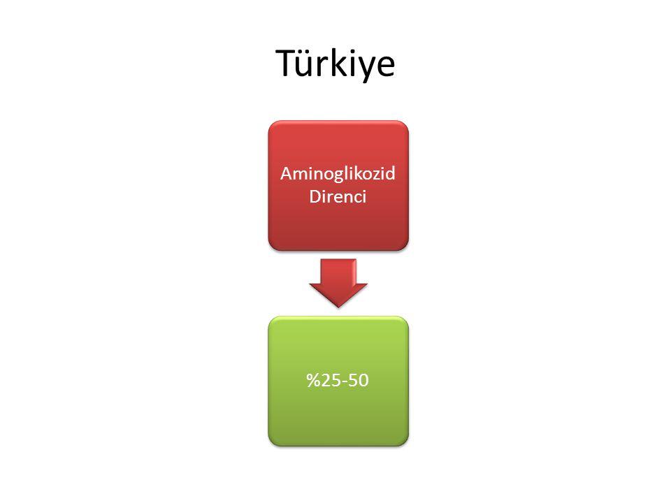 Türkiye Aminoglikozid Direnci %25-50