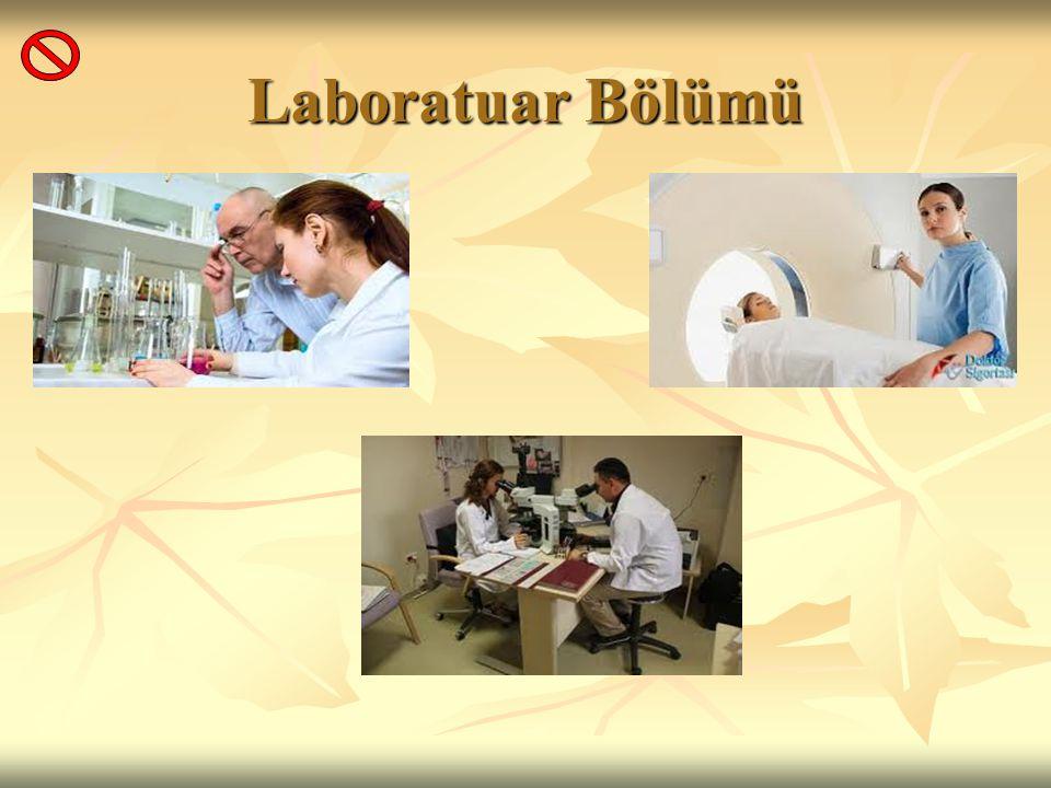 Laboratuar Bölümü