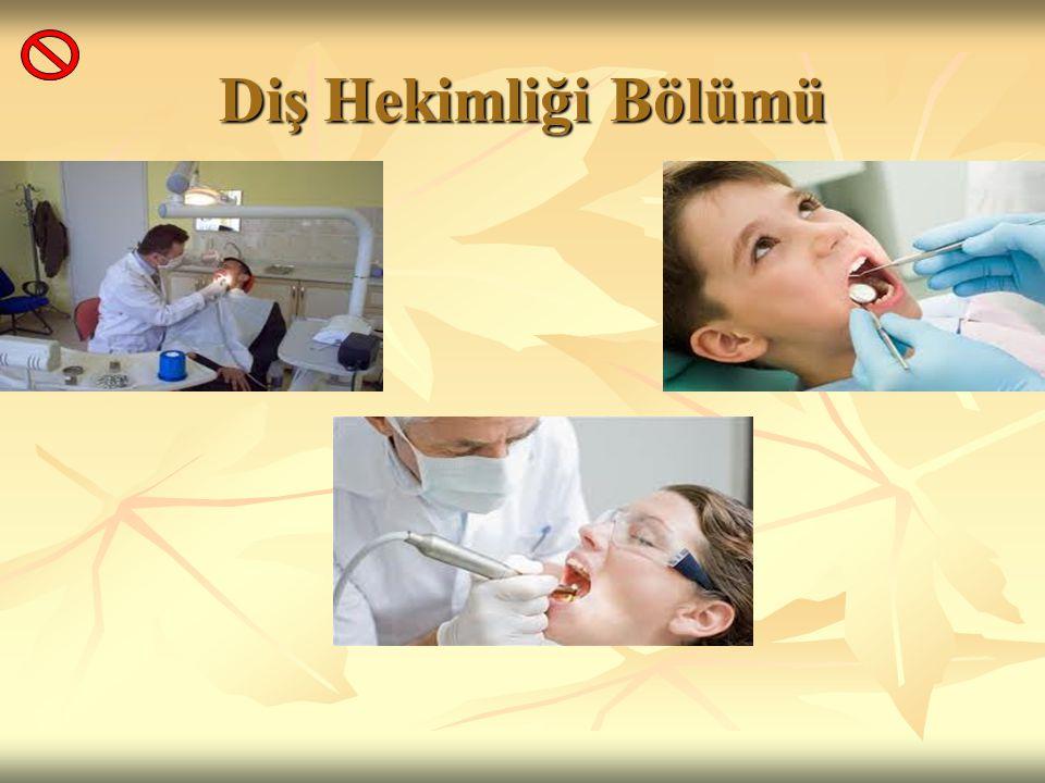 Diş Hekimliği Bölümü
