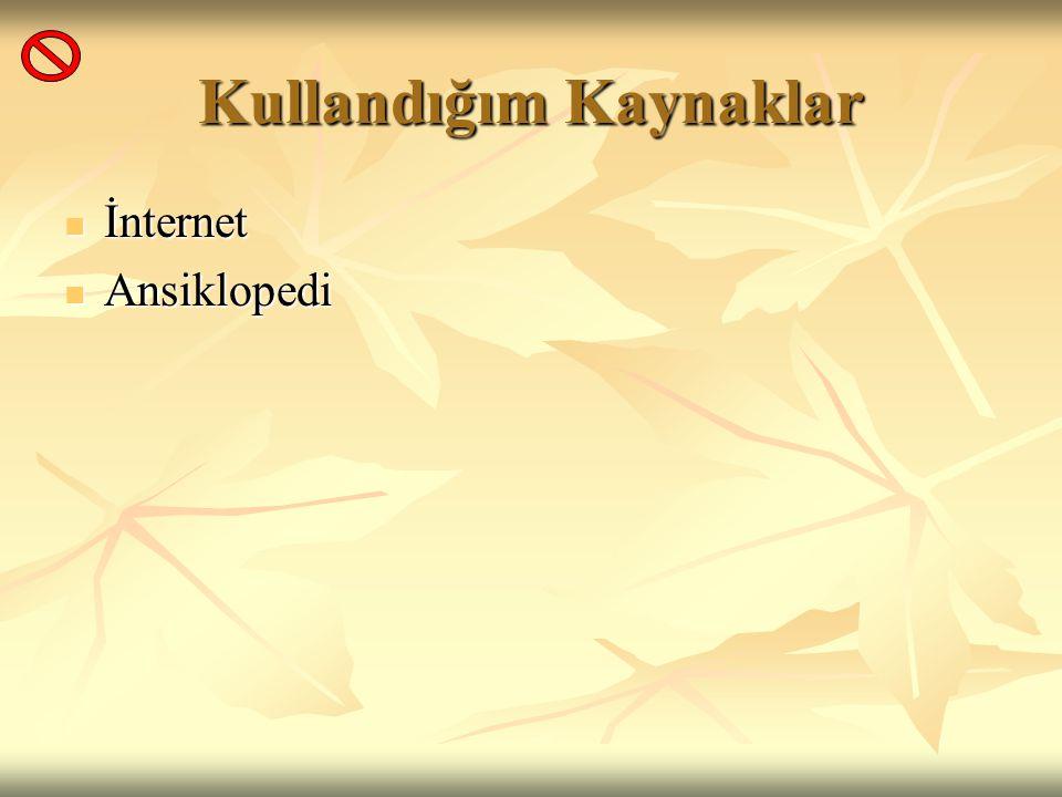 Kullandığım Kaynaklar İnternet İnternet Ansiklopedi Ansiklopedi