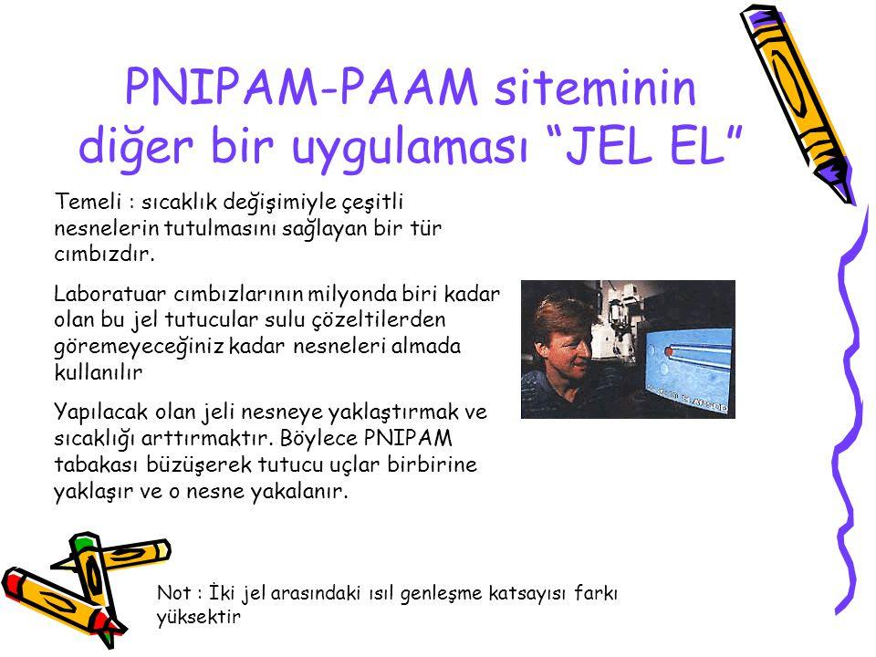 PNIPAM-PAAM siteminin diğer bir uygulaması JEL EL Temeli : sıcaklık değişimiyle çeşitli nesnelerin tutulmasını sağlayan bir tür cımbızdır.