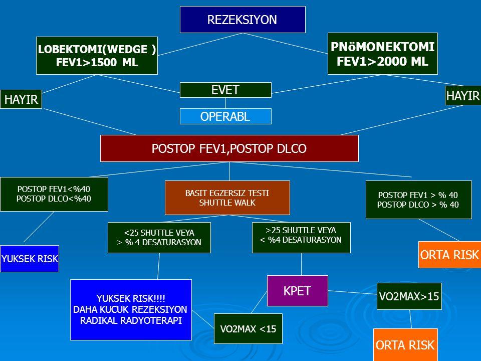 REZEKSIYON LOBEKTOMI(WEDGE ) FEV1>1500 ML PNöMONEKTOMI FEV1>2000 ML EVET OPERABL POSTOP FEV1,POSTOP DLCO HAYIR POSTOP FEV1<%40 POSTOP DLCO<%40 BASIT EGZERSIZ TESTI SHUTTLE WALK POSTOP FEV1 > % 40 POSTOP DLCO > % 40 <25 SHUTTLE VEYA > % 4 DESATURASYON >25 SHUTTLE VEYA < %4 DESATURASYON YUKSEK RISK!!!.