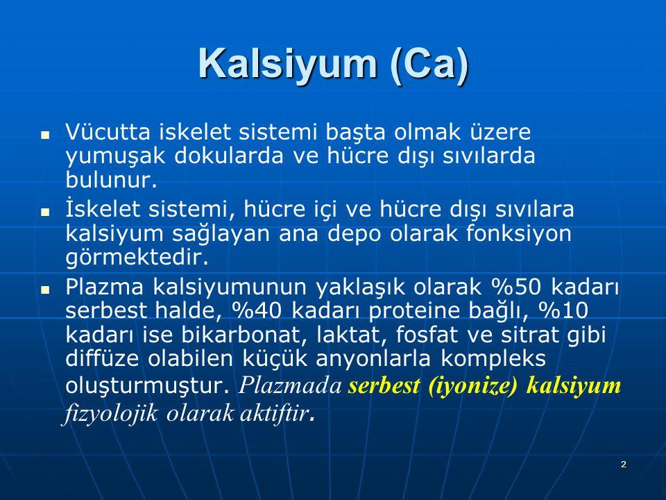 2 Kalsiyum (Ca) Vücutta iskelet sistemi başta olmak üzere yumuşak dokularda ve hücre dışı sıvılarda bulunur. İskelet sistemi, hücre içi ve hücre dışı