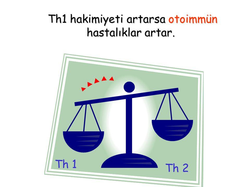 Th1 hakimiyeti artarsa otoimmün Th1 hakimiyeti artarsa otoimmün hastalıklar artar. Th 2 Th 1
