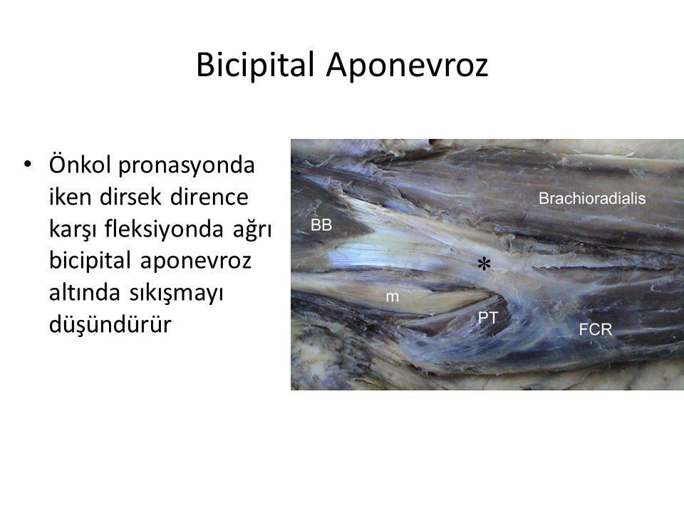 Bicipital Aponevroz Önkol pronasyonda iken dirsek dirence karşı fleksiyonda ağrı bicipital aponevroz altında sıkışmayı düşündürür