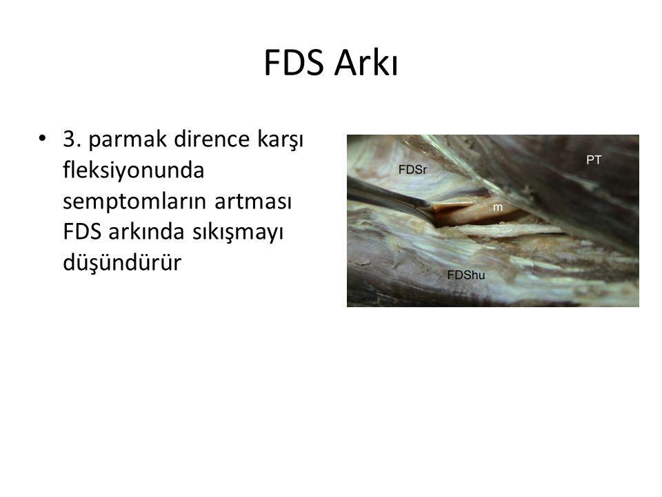 FDS Arkı 3.