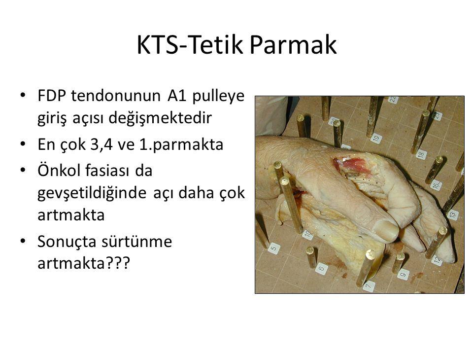 KTS-Tetik Parmak FDP tendonunun A1 pulleye giriş açısı değişmektedir En çok 3,4 ve 1.parmakta Önkol fasiası da gevşetildiğinde açı daha çok artmakta S