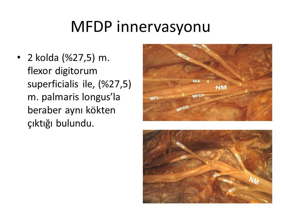 MFDP innervasyonu 2 kolda (%27,5) m. flexor digitorum superficialis ile, (%27,5) m. palmaris longus'la beraber aynı kökten çıktığı bulundu.