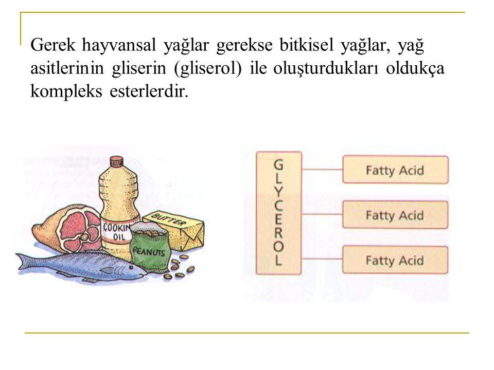 Nötral lipidler Gliseridler (yağlar)  Gliserol  Gliserol esterleri - mono gliseridler, digliseridler ve trigliseridler Wakslar – uzun zincirli alkollerin basit esterleri