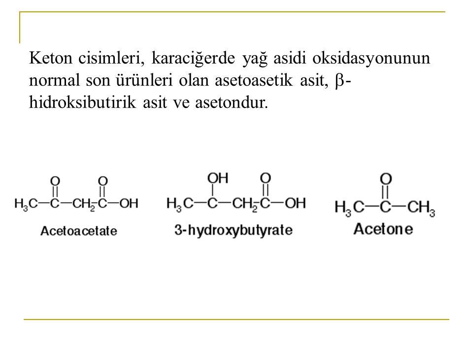 Yağ aldehitleri ve keton cisimleri lipid türevleridirler.