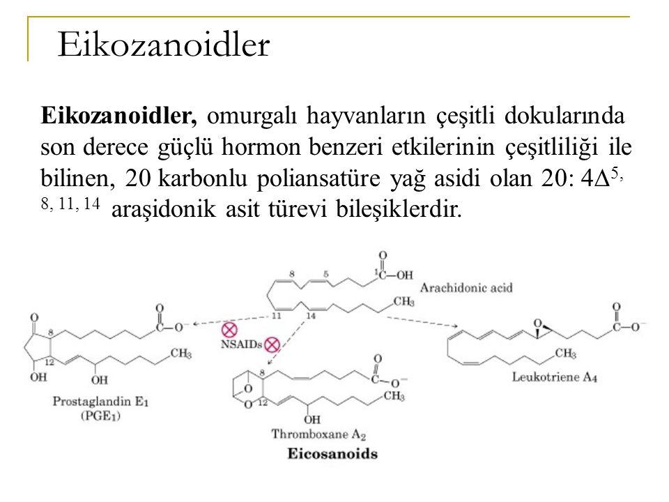 Keton cisimleri, karaciğerde yağ asidi oksidasyonunun normal son ürünleri olan asetoasetik asit,  - hidroksibutirik asit ve asetondur.