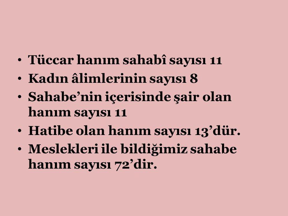 Tüccar hanım sahabî sayısı 11 Kadın âlimlerinin sayısı 8 Sahabe'nin içerisinde şair olan hanım sayısı 11 Hatibe olan hanım sayısı 13'dür. Meslekleri i