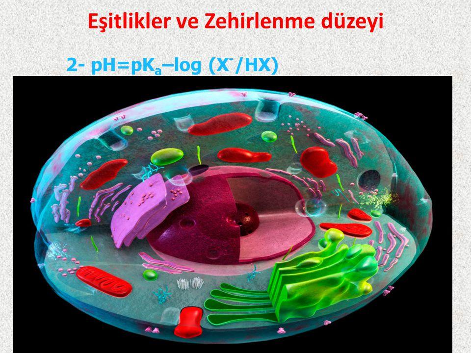 Eşitlikler ve Zehirlenme düzeyi 4/3/20153Prof. Dr. Salih CENGİZ 2- pH=pK a –log (X - /HX)