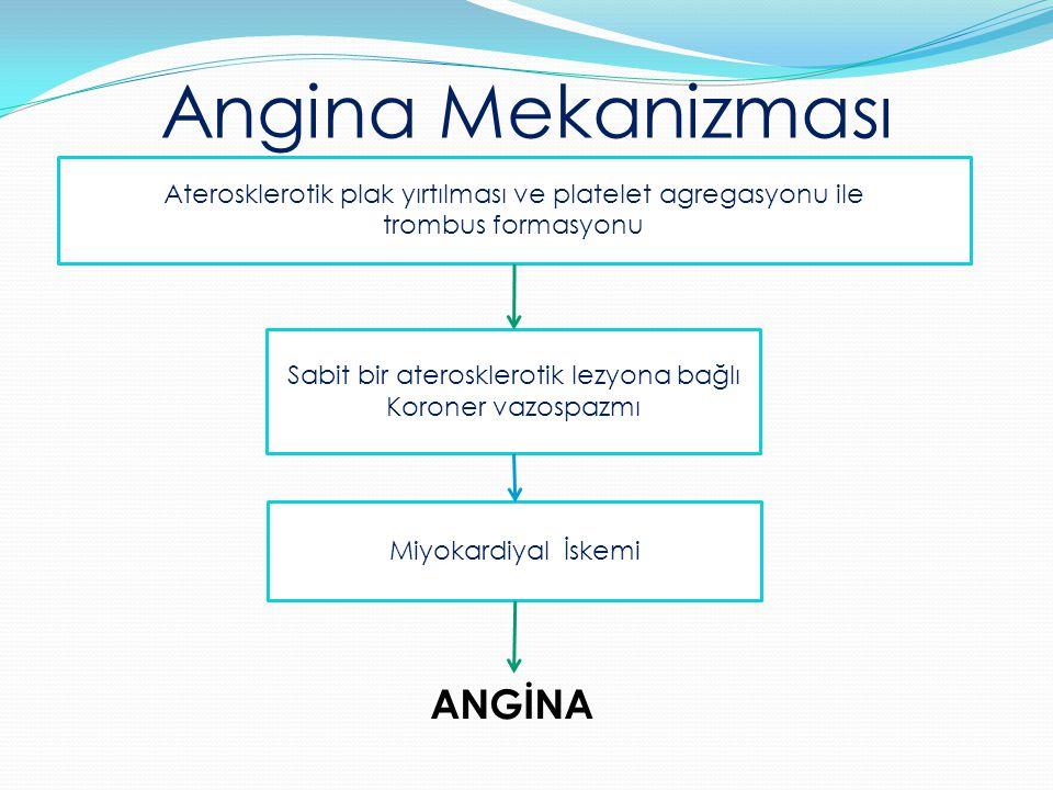 Aterosklerotik plak yırtılması ve platelet agregasyonu ile trombus formasyonu Angina Mekanizması Sabit bir aterosklerotik lezyona bağlı Koroner vazosp
