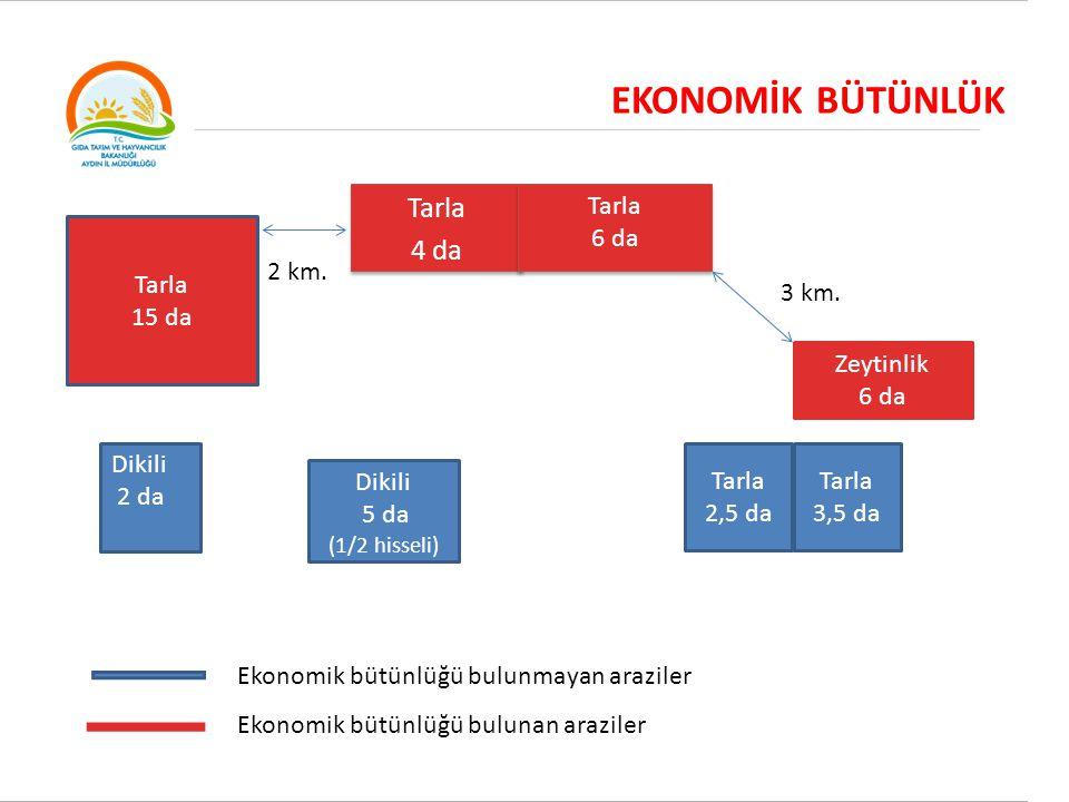 EKONOMİK BÜTÜNLÜK Tarla 4 da Tarla 4 da Tarla 6 da Tarla 6 da Dikili 2 da Dikili 5 da (1/2 hisseli) Tarla 2,5 da Tarla 3,5 da Tarla 15 da Ekonomik büt
