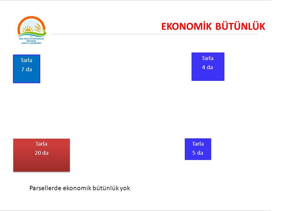 EKONOMİK BÜTÜNLÜK Tarla 7 da Tarla 4 da Tarla 20 da Tarla 20 da Tarla 5 da Parsellerde ekonomik bütünlük yok