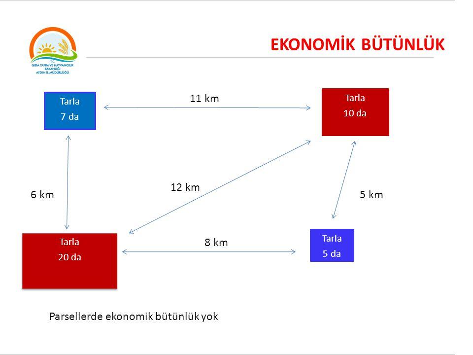 EKONOMİK BÜTÜNLÜK Tarla 7 da Tarla 10 da 11 km Tarla 20 da Tarla 20 da Tarla 5 da 8 km 6 km5 km Parsellerde ekonomik bütünlük yok 12 km