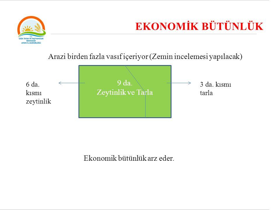 EKONOMİK BÜTÜNLÜK 9 da. Zeytinlik ve Tarla Ekonomik bütünlük arz eder. Arazi birden fazla vasıf içeriyor (Zemin incelemesi yapılacak) 6 da. kısmı zeyt