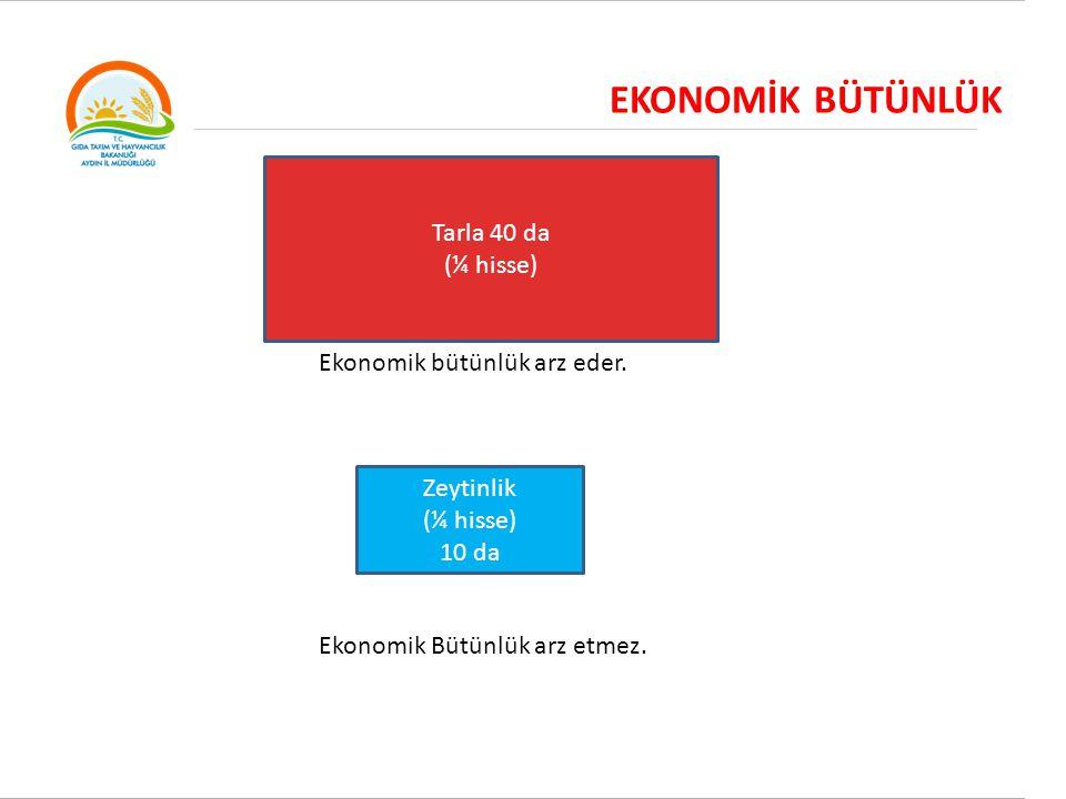 EKONOMİK BÜTÜNLÜK Tarla 40 da (¼ hisse) Ekonomik bütünlük arz eder. Zeytinlik (¼ hisse) 10 da Ekonomik Bütünlük arz etmez.