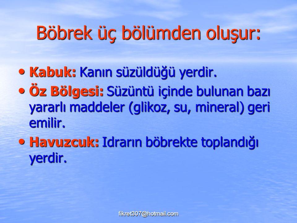 fikret307@hotmail.com Böbrek üç bölümden oluşur: Kabuk: Kanın süzüldüğü yerdir. Kabuk: Kanın süzüldüğü yerdir. Öz Bölgesi: Süzüntü içinde bulunan bazı