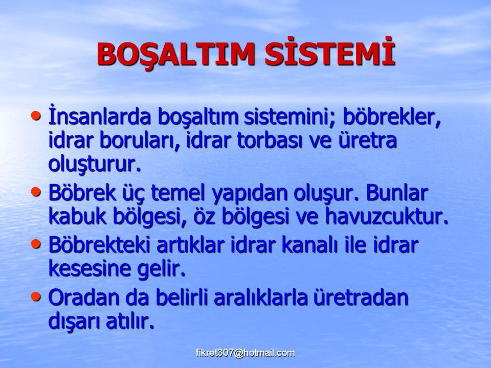 fikret307@hotmail.com BOŞALTIM SİSTEMİ İnsanlarda boşaltım sistemini; böbrekler, idrar boruları, idrar torbası ve üretra oluşturur. İnsanlarda boşaltı