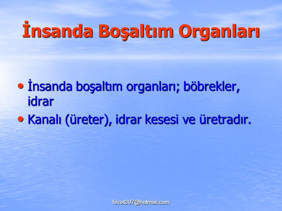 fikret307@hotmail.com İnsanda Boşaltım Organları İnsanda boşaltım organları; böbrekler, idrar İnsanda boşaltım organları; böbrekler, idrar Kanalı (üre