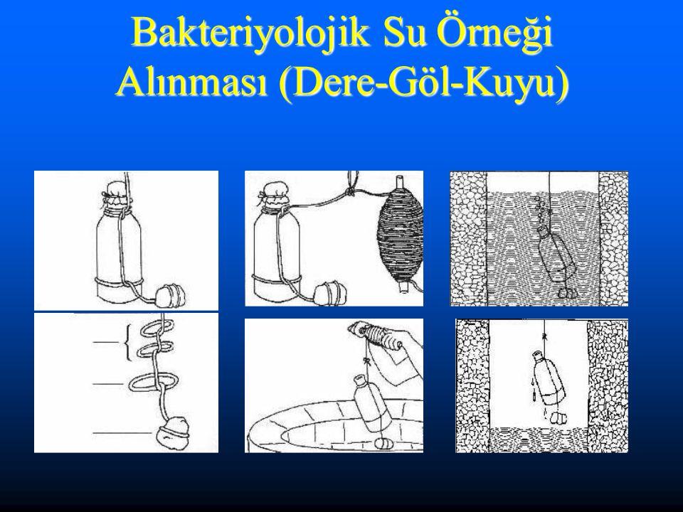 Bakteriyolojik Su Örneği Alınması (Dere-Göl-Kuyu)