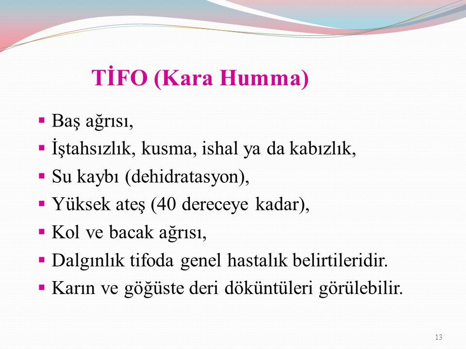 TİFO (Kara Humma)  Baş ağrısı,  İştahsızlık, kusma, ishal ya da kabızlık,  Su kaybı (dehidratasyon),  Yüksek ateş (40 dereceye kadar),  Kol ve ba