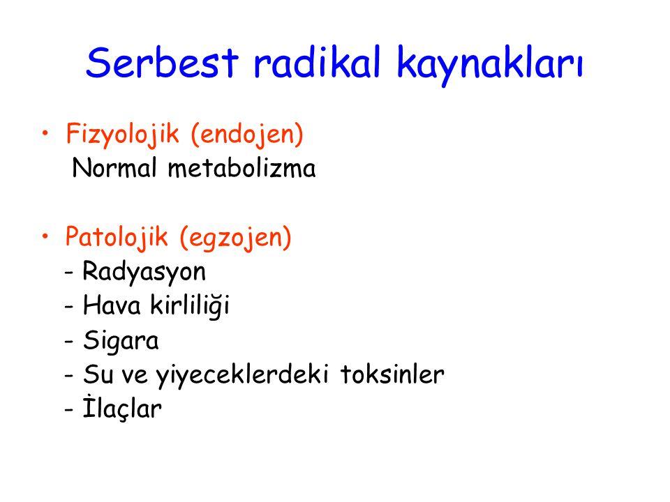 Serbest radikal kaynakları Fizyolojik (endojen) Normal metabolizma Patolojik (egzojen) - Radyasyon - Hava kirliliği - Sigara - Su ve yiyeceklerdeki toksinler - İlaçlar