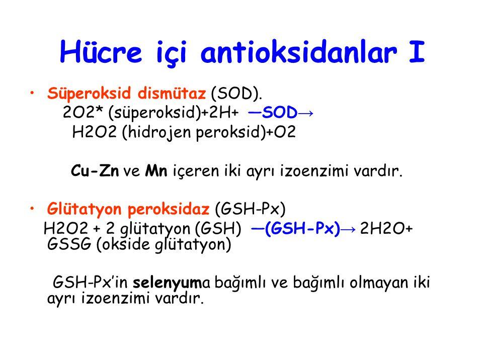 Hücre içi antioksidanlar I Süperoksid dismütaz (SOD).