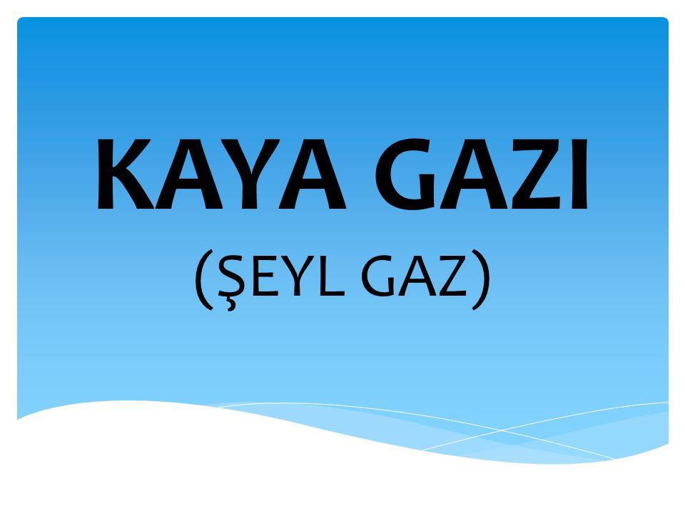 Kaya gazının doğalgaz üretimindeki yeri