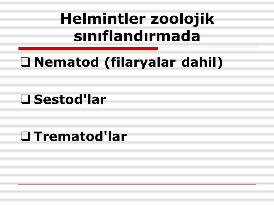 Helmintler zoolojik sınıflandırmada  Nematod (filaryalar dahil)  Sestod'lar  Trematod'lar