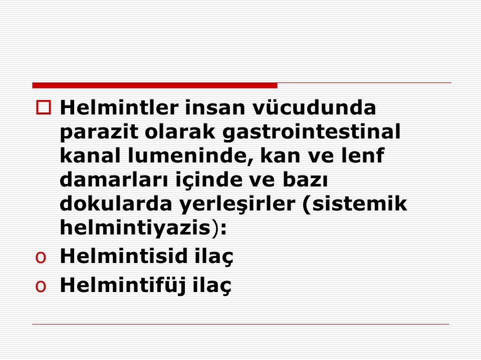  Helmintler insan vücudunda parazit olarak gastrointestinal kanal lumeninde, kan ve lenf damarları içinde ve bazı dokularda yerleşirler (sistemik hel