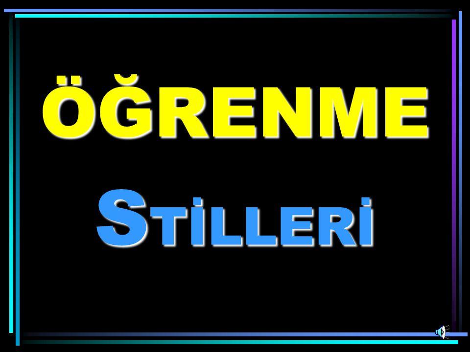 STİLLERİ ÖĞRENME