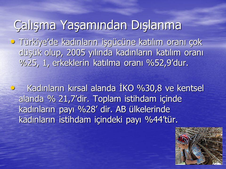 Çalışma Yaşamından Dışlanma Türkiye'de kadınların işgücüne katılım oranı çok düşük olup, 2005 yılında kadınların katılım oranı %25, 1, erkeklerin katılma oranı %52,9'dur.