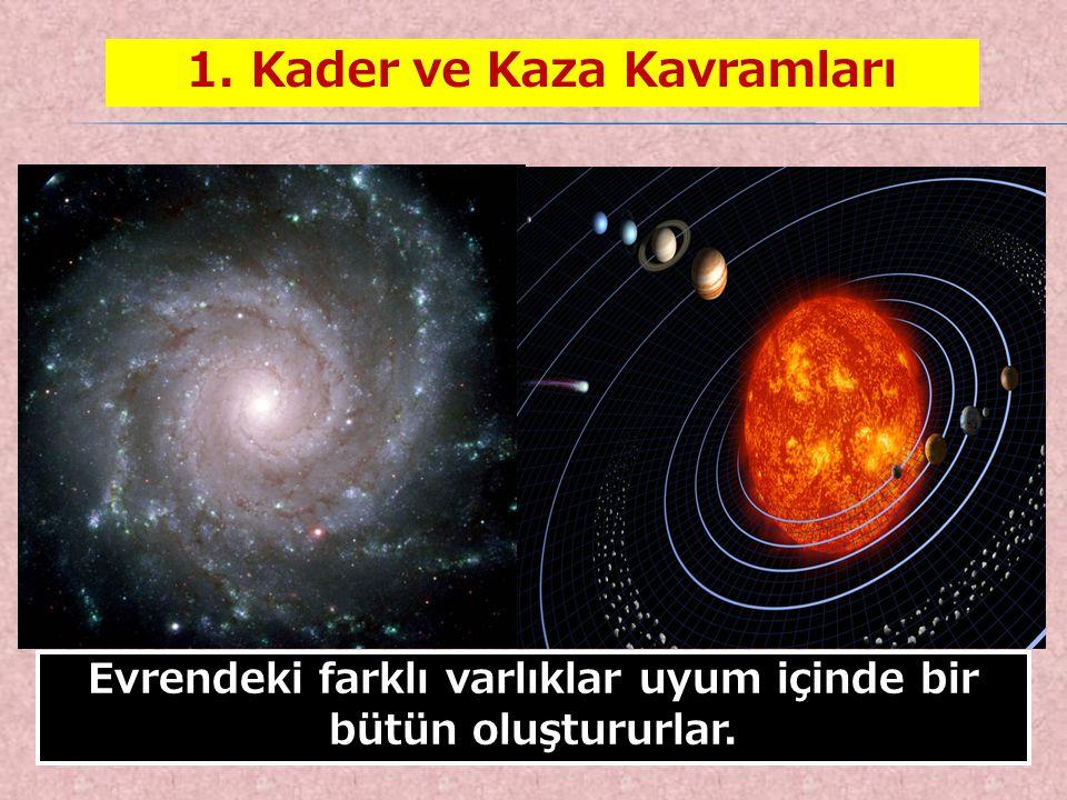 4 Evrendeki farklı varlıklar uyum içinde bir bütün oluştururlar. 1. Kader ve Kaza Kavramları