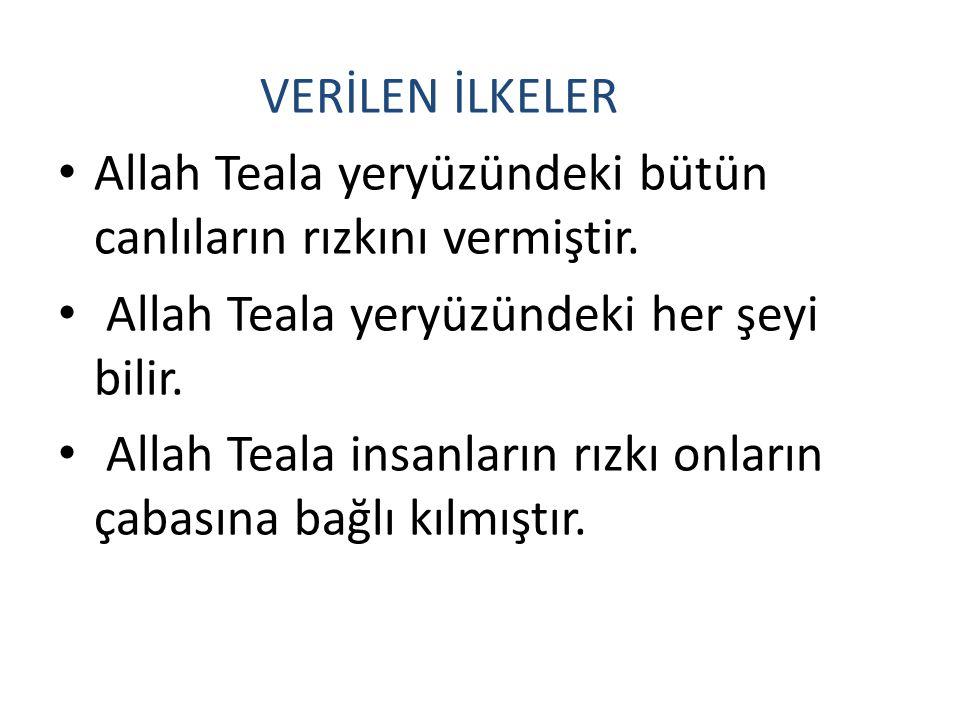 VERİLEN İLKELER Allah Teala yeryüzündeki bütün canlıların rızkını vermiştir. Allah Teala yeryüzündeki her şeyi bilir. Allah Teala insanların rızkı onl
