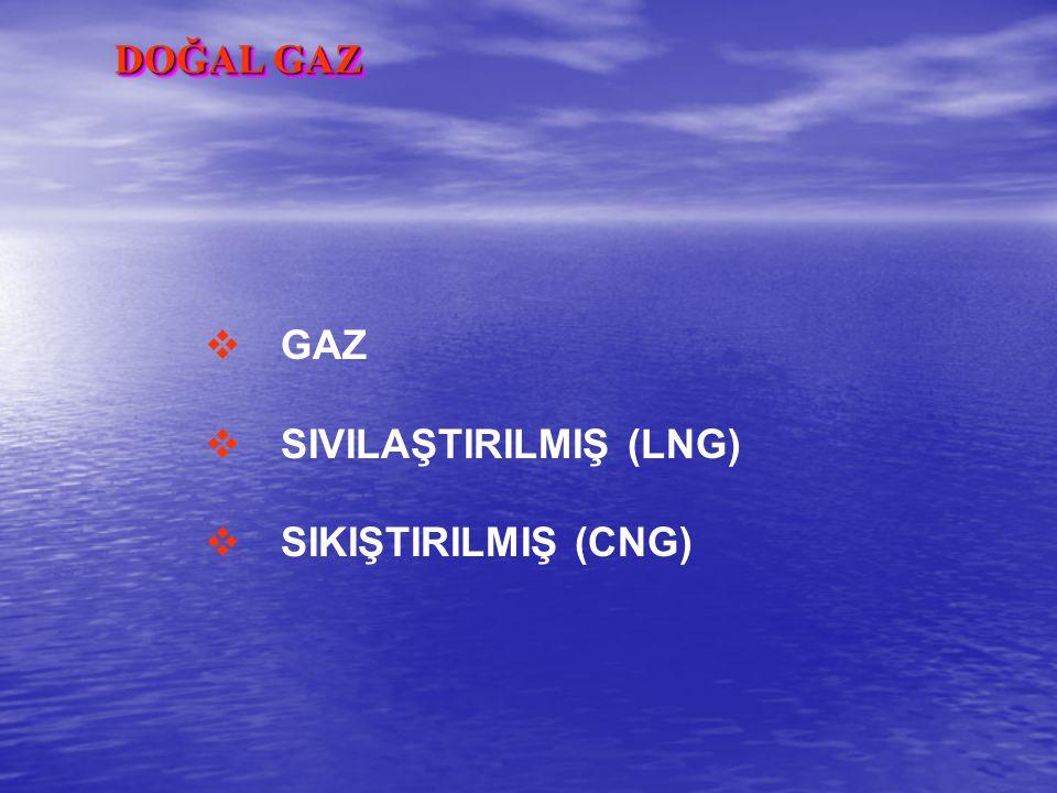 DOĞAL GAZ  GAZ  SIVILAŞTIRILMIŞ (LNG)  SIKIŞTIRILMIŞ (CNG)