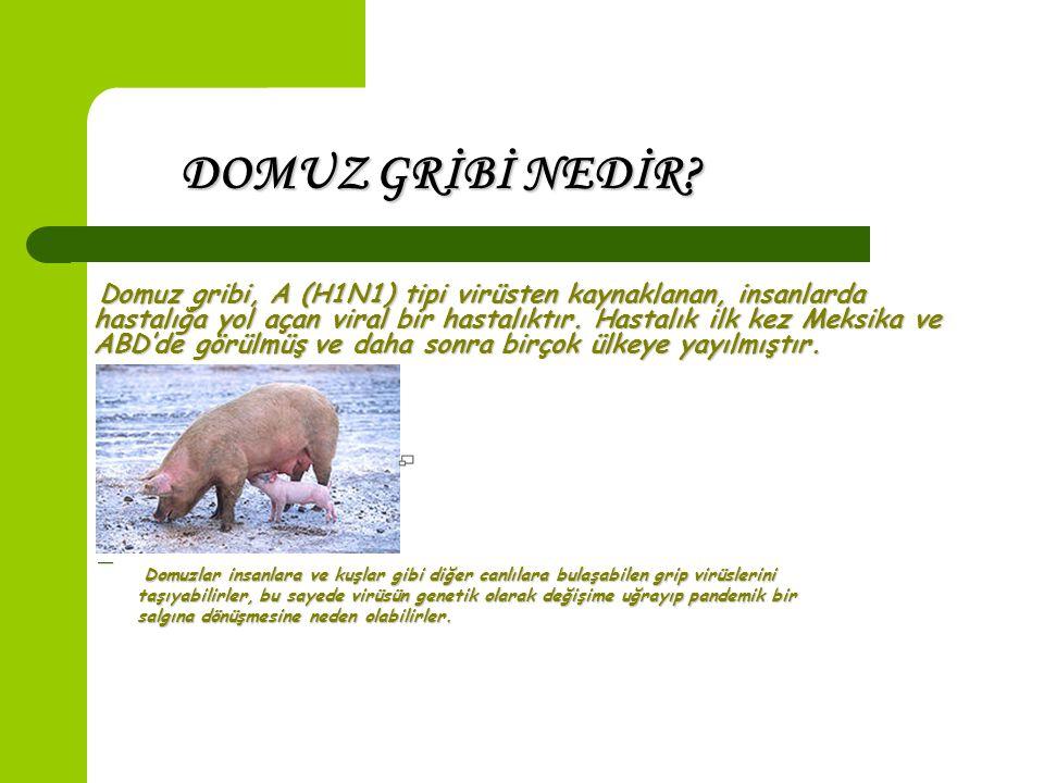 Domuz gribi, A (H1N1) tipi virüsten kaynaklanan, insanlarda hastalığa yol açan viral bir hastalıktır.