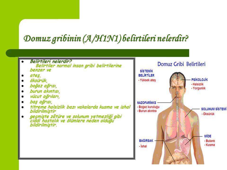 Domuz gribinin (A/H1N1) belirtileri nelerdir? Belirtileri nelerdir? Belirtiler normal insan gribi belirtilerine benzer ve Belirtileri nelerdir? Belirt