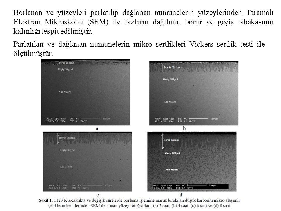 Borlanan ve yüzeyleri parlatılıp dağlanan numunelerin yüzeylerinden Taramalı Elektron Mikroskobu (SEM) ile fazların dağılımı, borür ve geçiş tabakasın