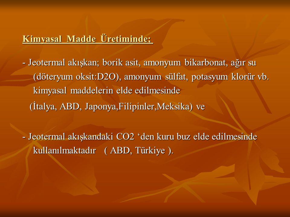 TÜRKİYEDEKİ ÖNEMLİ JEOTERMAL ALANLAR