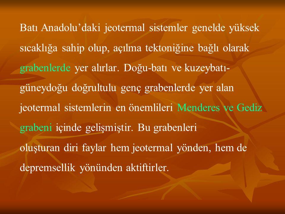 Menderes Grabeninde, Türkiye'nin en yüksek sıcaklığına sahip Denizli-Kızıldere jeotermal sahası (242 C), Aydın-Germencik jeotermal sahası (232 C), Aydın-Salavatlı jeotermal sahası (171 C), Aydın-Yılmazköy-İmamköy jeotermal sahası (142 C) bulunmaktadır.