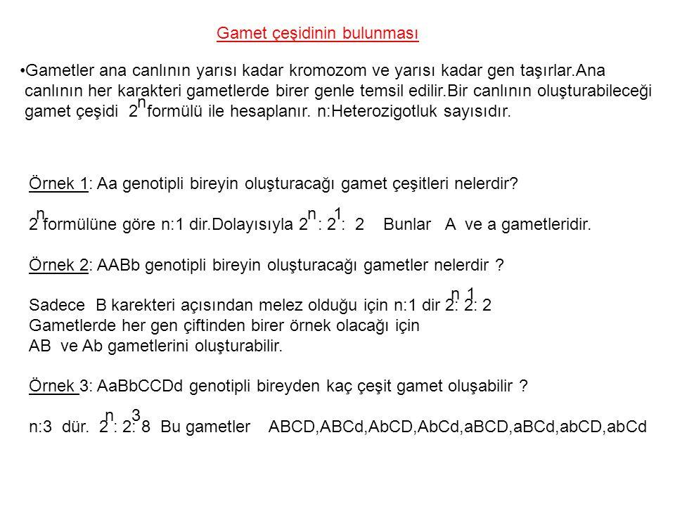 Gamet çeşidinin bulunması Gametler ana canlının yarısı kadar kromozom ve yarısı kadar gen taşırlar.Ana canlının her karakteri gametlerde birer genle t