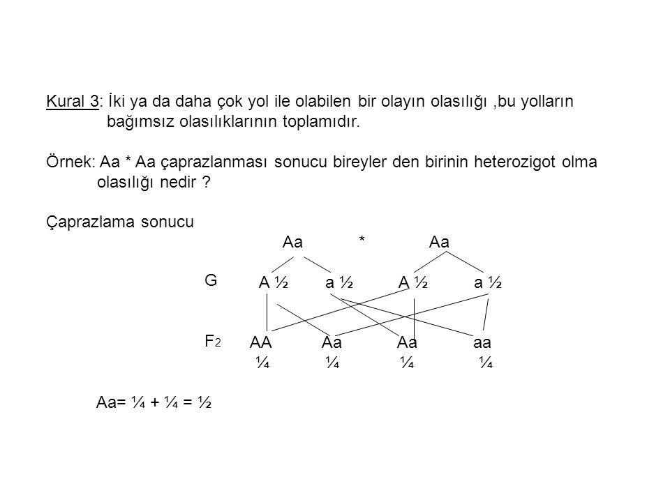 Kural 3: İki ya da daha çok yol ile olabilen bir olayın olasılığı,bu yolların bağımsız olasılıklarının toplamıdır. Örnek: Aa * Aa çaprazlanması sonucu